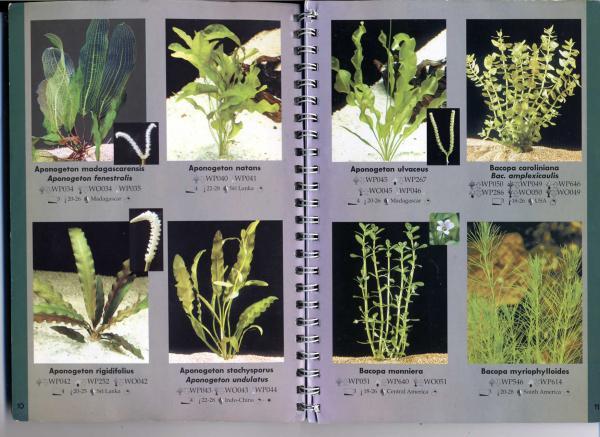 стр. 10—11