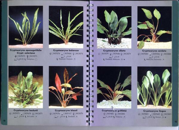 стр. 18—19