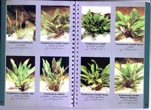 стр. 22—23