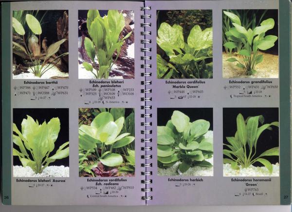 стр. 26—27