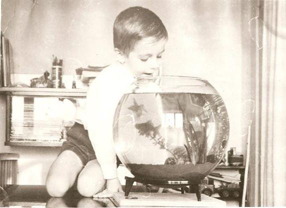 akvariumnoe_detstvo.jpg