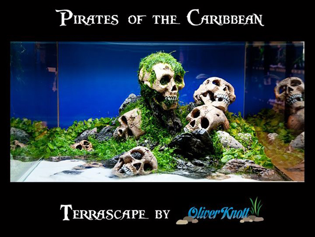 scull_5_pirates_of_the_caribbean.jpg