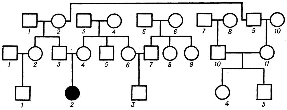 Схема аутосомно-рецессивного типа наследования без обозначения гетерозигот