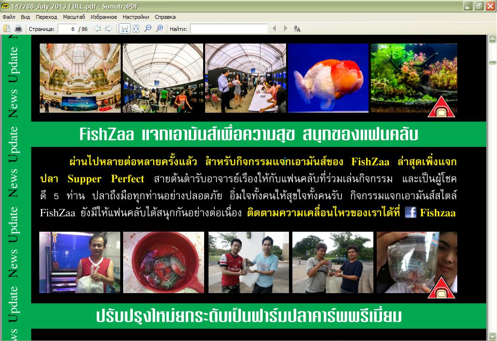 fish_saa-07-20130.png