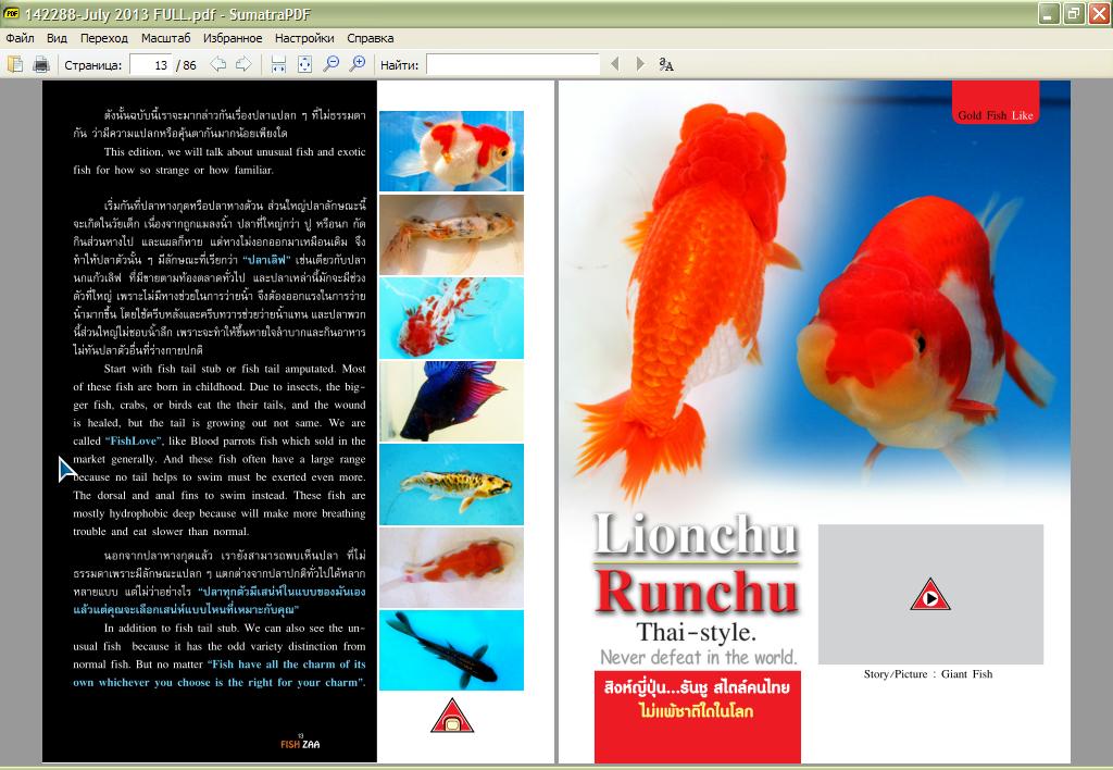 fish_zaa-07-201300.png