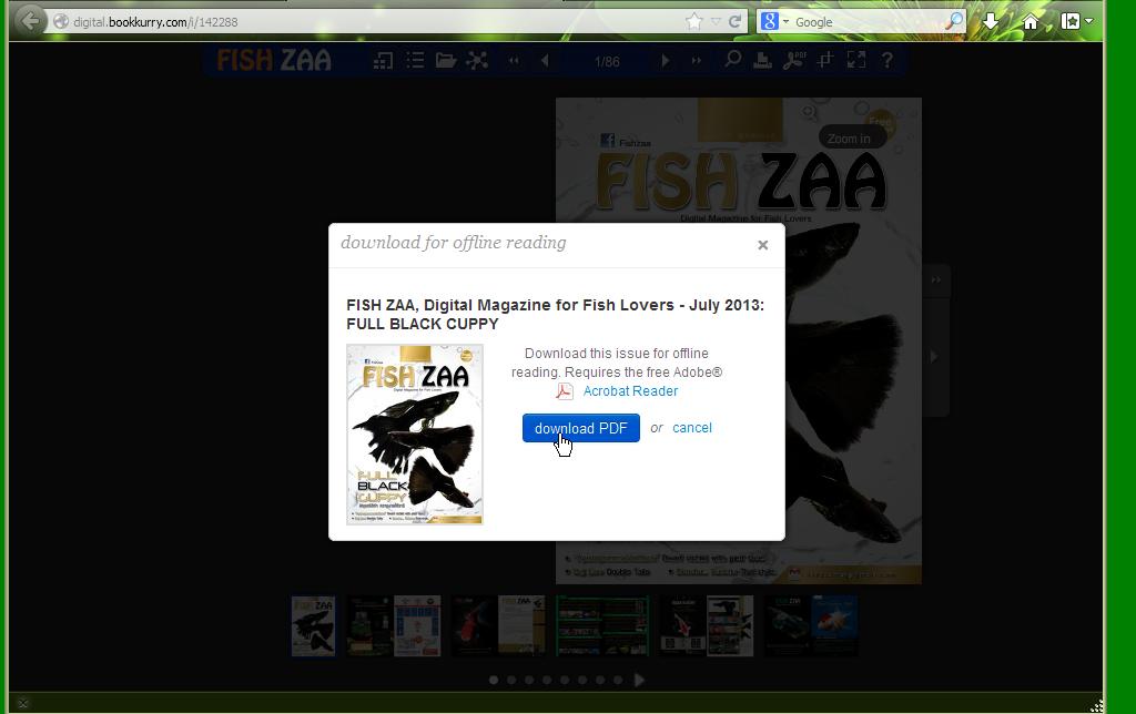 fish_zaa-07-20136.png