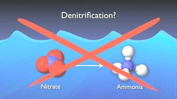 nitrogen_removal_basics-0-07-22-475.jpg