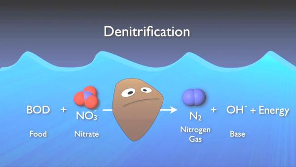 nitrogen_removal_basics-0-08-08-512.jpg