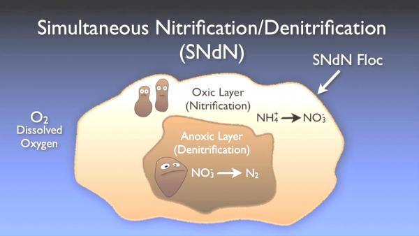 nitrogen_removal_basics-0-08-53-478.jpg