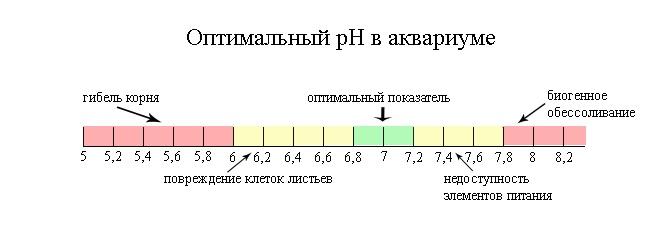optimal_ph.jpg