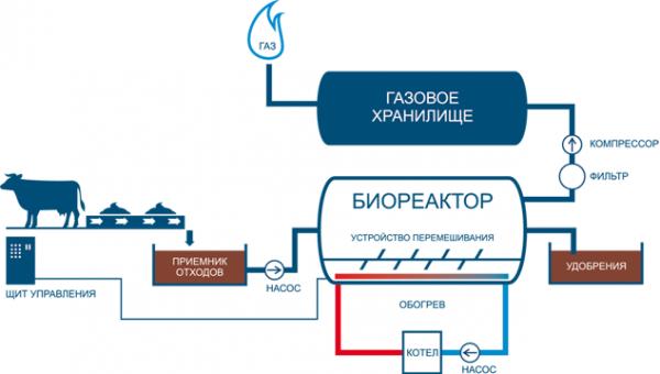 shema_polucheniya_biogaza2.png