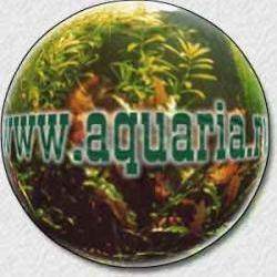 aquaria.ru