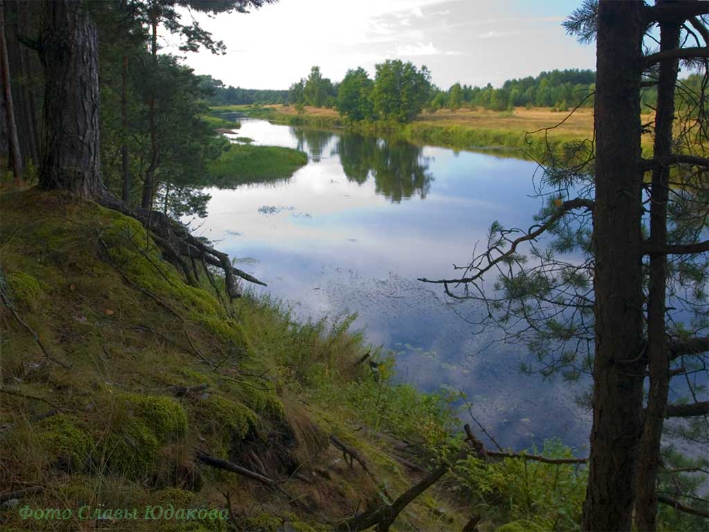 river-crw_9429.jpg